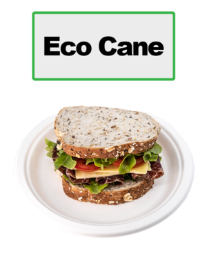 Eco Cane