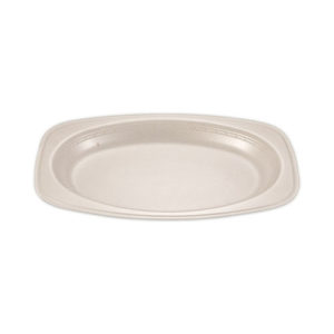Plate Oval White 10 x 8 inch